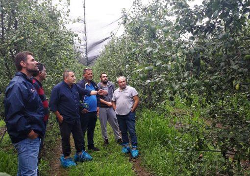 Επίσκεψη του τεχνικού επιτελείου της NovaGreen σε αγροκτήματα του δήμου Τεγέας του νομού Τριπολης